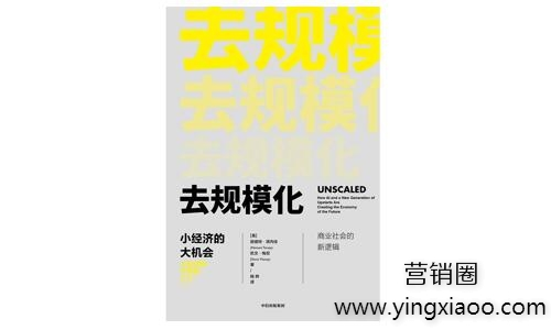 《去规模化:小经济的大机会》PDF完整版电子书去规模化读后感网盘免费下载